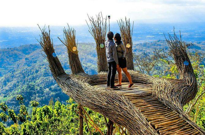 wisata jogja pinus pengger 5 Wisata Jogja Harus Kamu Kunjungi Dipertengahan Tahun 2019
